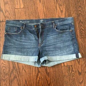 Size 16 Loft Demin Roll Shorts
